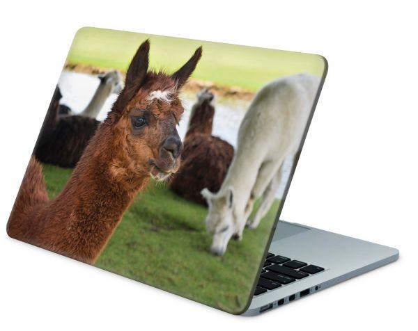 MacBook Pro 13 Modell 2018 Skin Aufkleber Decal Cover Lamas