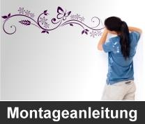 montage57f4a7a2e5806